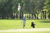 37th 8/31/16 Men's Golf at Jamestown Photo
