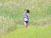 16th 8/29/14 - Cross Country VCSU Invitational Photo